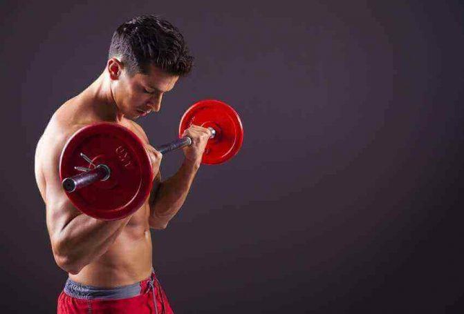 Como ganhar massa muscular: treino correto