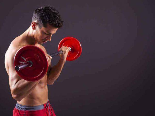 Musculação: treino correto
