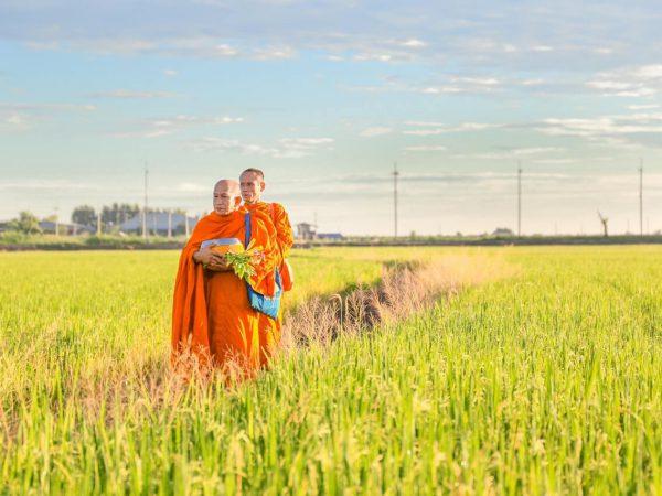 Meditação Vipassana