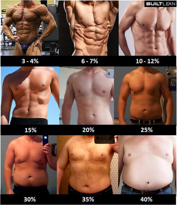 corpo definido - Percentual de gordura para homens